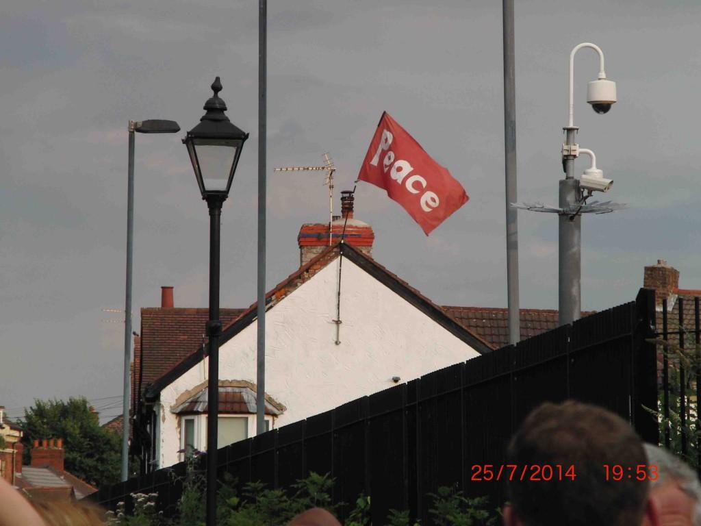 15e 25.7.14 A friendly flag, Newsham Park